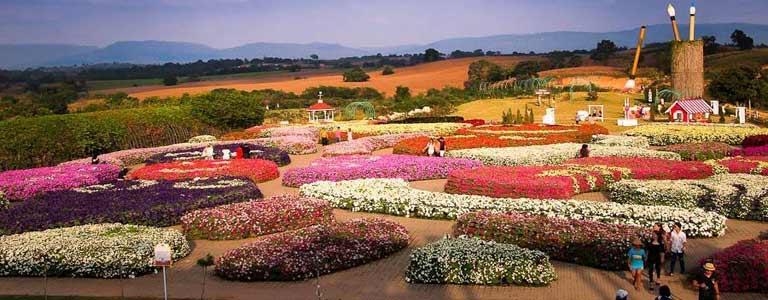 Flora Park Wang Nam Keaw - Flora Fair