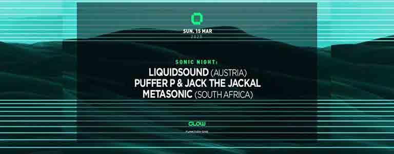 Sonic Night : Liquidsound, Puffer P, Jack the Jackal & Metasonic