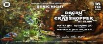 Sonic Night : Dacru meets Grasshopper