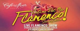 Latino Del Mar Flamenco!